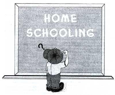 Educar en casa homeschooling entrevistamos a la experta laura mascar sobre todos los - Educar en casa ...