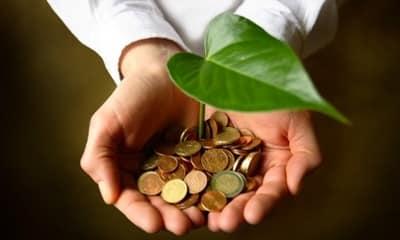 Ecología y economía