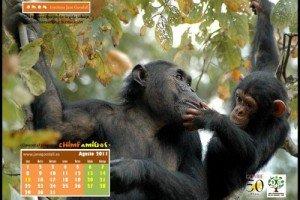Calendario IJGE ago2011 1024