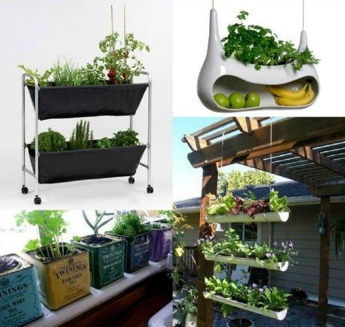 Ideas para cultivar plantas arom ticas en casa el blog - Plantas aromaticas en la cocina ...
