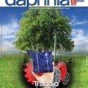 Daphnia 59