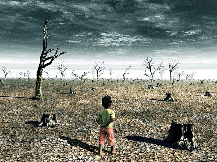 efectos del cambio climático en la salud mental y física