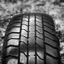 elegir neumático